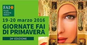 FAI-2016 banner